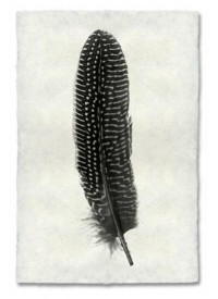 Atolyia Barloga Feather Print #5 on Natural Paper