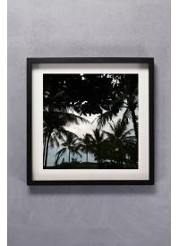 Inartisan Palm Silhouette Square